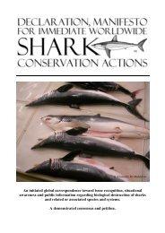 declaration, manifesto for immediate worldwide shark conservation ...