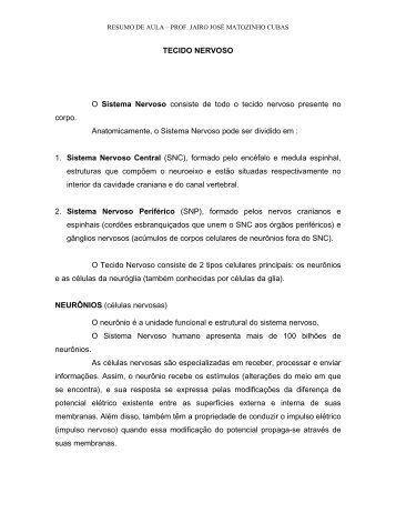 TECIDO NERVOSO - Jairo J. Matozinho Cubas