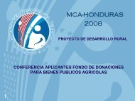 Presentación 2da. Ronda de Donaciones - Cuenta del Milenio ...