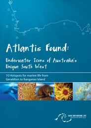 Atlantis Found: - The Wilderness Society