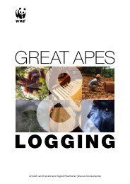 Great Apes and Logging