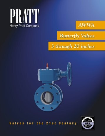 A Tradition of Excellence - Summit Valve and Controls