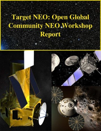 Target NEO: Open Global Community NEO Workshop Report