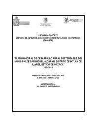 plan municipal de desarrollo rural sustentable, del municipio de san ...