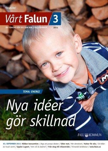Vårt Falun nr 3, 2011 (pdf 4,9 MB) - Falu Kommun