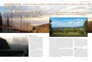 Artikel über Visionssuche in der Zeitschrift Visionen ... - Inner Nature