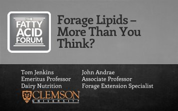 Forage Lipids – More Than You Think? - Virtus Nutrition