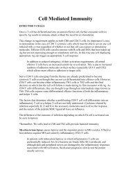 Cell Mediated Immunity (pdf)