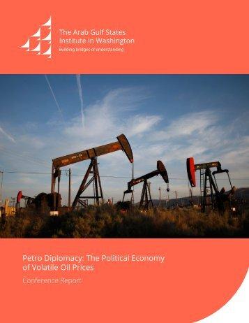 Petro-Dipl-report_final