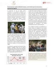 Historia Éxito cadena de miel, 2013 - MASRENACE