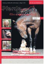 Gebisslose Zäumung – wirklich immer pferdeschonender?