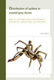 PhD Dries Bonte 2004 - Ghent Ecology - Universiteit Gent