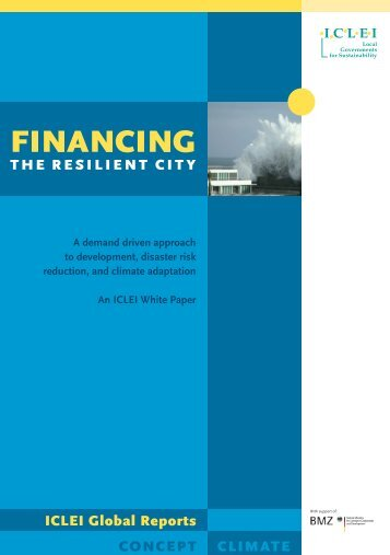 Financing the Resilient City, A white paper - ICLEI