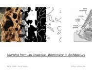Learning from Los Insectos: Biomimicry in Architecture