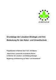 Grundzüge der Lissabon-Strategie und ihre Bedeutung für den ...
