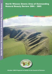 Annual Review 2004-2005 - North Wessex Downs Area of ...
