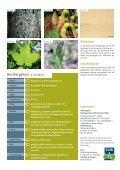 3015537 SDW Bergahorn.indd - Schutzgemeinschaft Deutscher Wald - Page 4