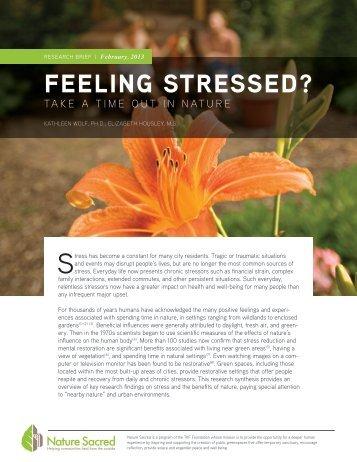 stress-response-report-v41