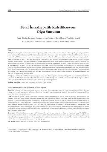 Fetal ‹ntrahepatik Kalsifikasyon: Olgu Sunumu  - Perinatoloji Dergisi
