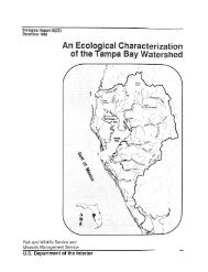 An Ecological Characterization of the Tampa Bay Watershed