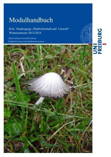 WUM Modulhandbuch WS 2013 PO 2009 - Fakultät für Umwelt und ...