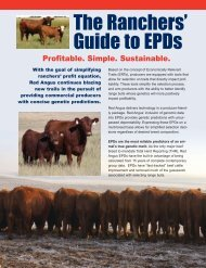 The Ranchers' Guide to EPDs - Red Angus Association of America