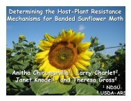 Determining the Host-Plant Resistance Mechanisms for Banded ...