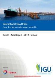 World LNG Report - 2013 Edition - HidrocarburosBolivia.com