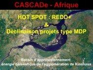 Etude Hot Spots REDD (O. Hamel).pdf