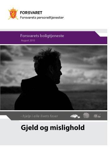 Gjeld og mislighold - innmat 2010 - Forsvaret