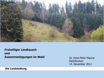 Freiwilliger Landtausch und Zusammenlegungen im Wald