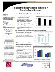 The Benefits of Preemergence Herbicides in Roundup Ready ...