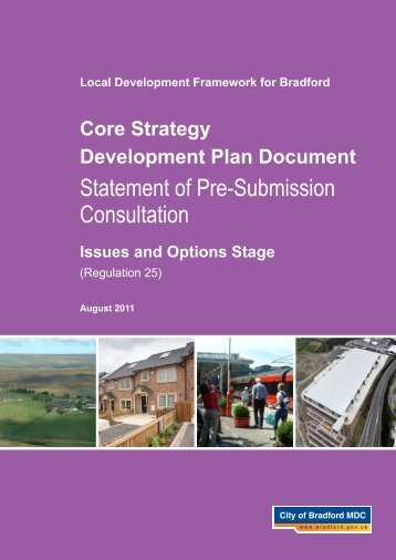 Issues and Options - Bradford Metropolitan District Council