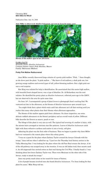 "Abutilon hulseanum.pdf - Christina Mild's ""Rio Delta Wild"""