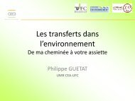 Téléchargez sa présentation - Département Chimie IUT Besançon 25