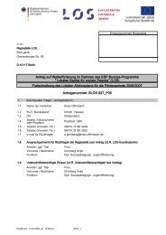 Lokaler Aktionsplan für die Förderperiode 2006-07 - LOS Seligenstadt