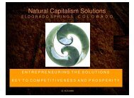 Natural Capitalism Solutions Natural Capitalism Solutions