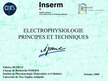 Diapositives du cours sur Powerpoint ... - IPMC - CNRS