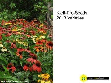 Kieft-Pro-Seeds 2013 Varieties