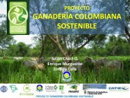 Proyecto: Mainstreaming Biodiversity in Sustainable Cattle Ranching