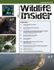 Wildlife Insider Spring Summer 2010 - Louisiana Department of ...