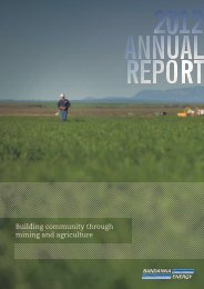2012 Annual Report - Bandanna Energy Limited