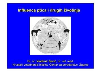 Influenca ptica i drugih vrsta životinja, V. Savić