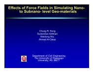 Effects of Force Fields in Simulating Nano- to Subnano- level Geo ...
