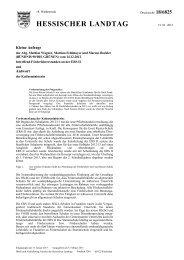 HESSISCHER LANDTAG - Bündnis 90/Die Grünen Hessen