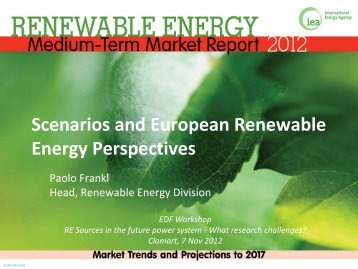 Scenarios and European Renewable Energy Perspectives
