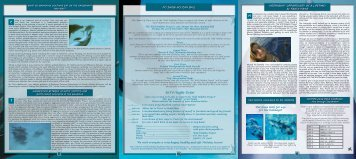 FALL-2011-Newsletter.. - Wild Dolphin Project