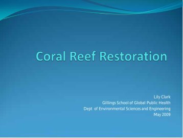 Coral Reef Restoration - Institute for the Environment at UNC