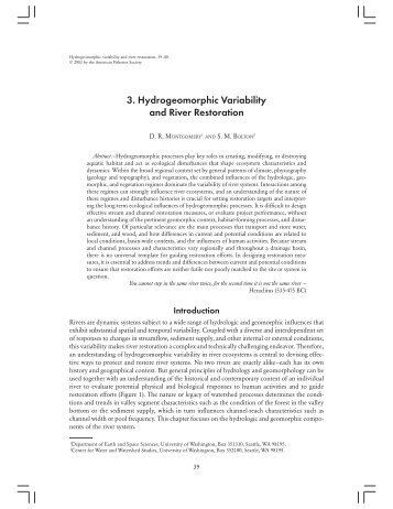 3. Hydrogeomorphic Variability and River Restoration