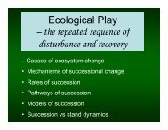 Ecological Play – the repeated sequence of disturbance and recovery